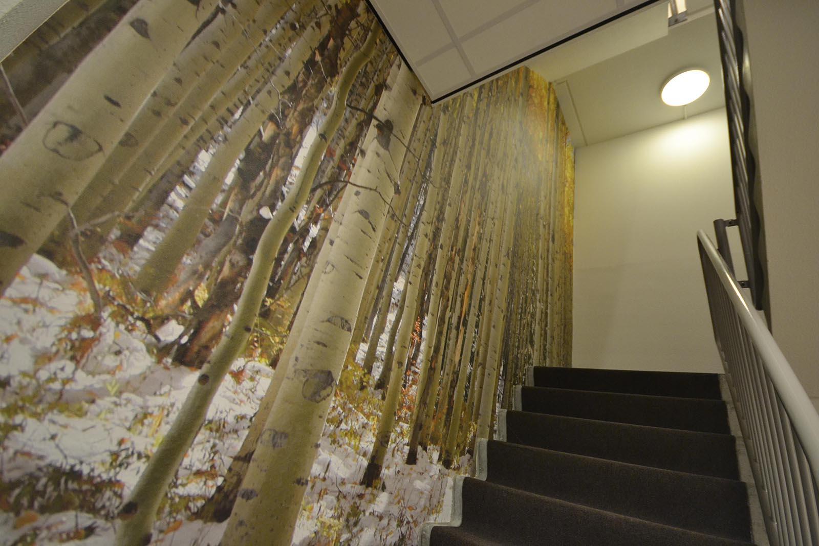 Fotobehang bos beste inspiratie voor huis ontwerp - Behang voor trappenhuis ...