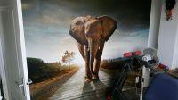 fotobehang-olifanten