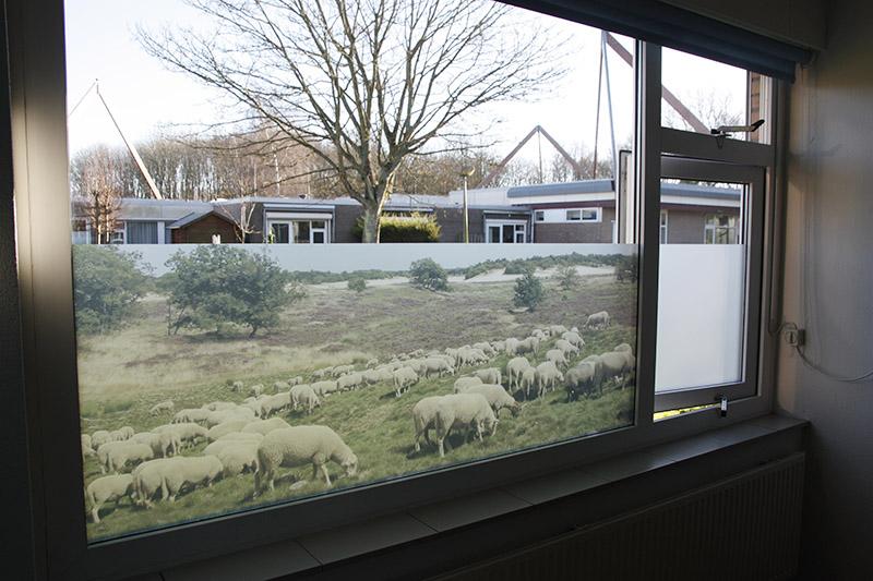 raamfolie met fotoprint op maat gemaakt