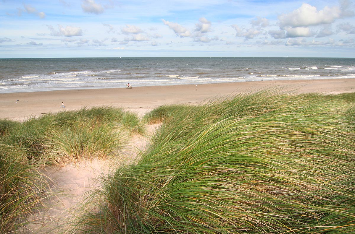 Fotobehang Strand Zee.Strand Fotobehang Xl Strand Behang Muurdeco4kids Te Of Decoratie Zee
